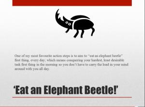 Beetle Procrastination
